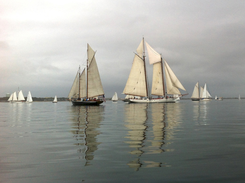 Schooners in Provincetown Harbor!