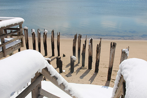 Provincetown Winter ~ Old Waterfront Pilings