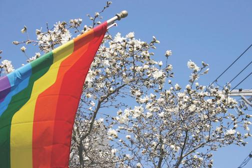 Pride Weekend in Provincetown