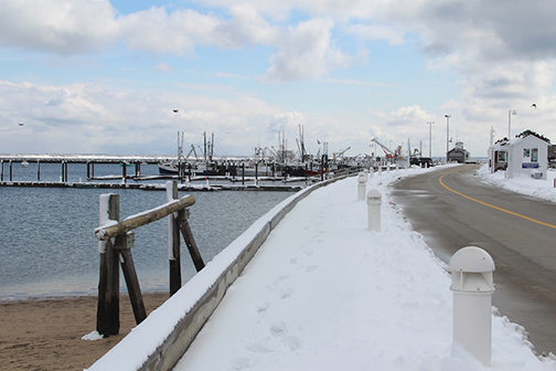 Provincetown Winter ~ Provincetown Harbor and MacMillan Pier