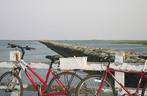 Provincetown has many bike shops, where you can rent or fix your bike.